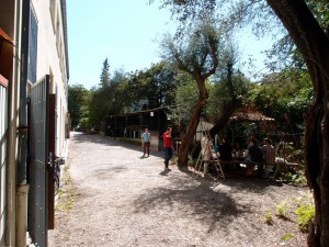 jardin_nicelab3.0